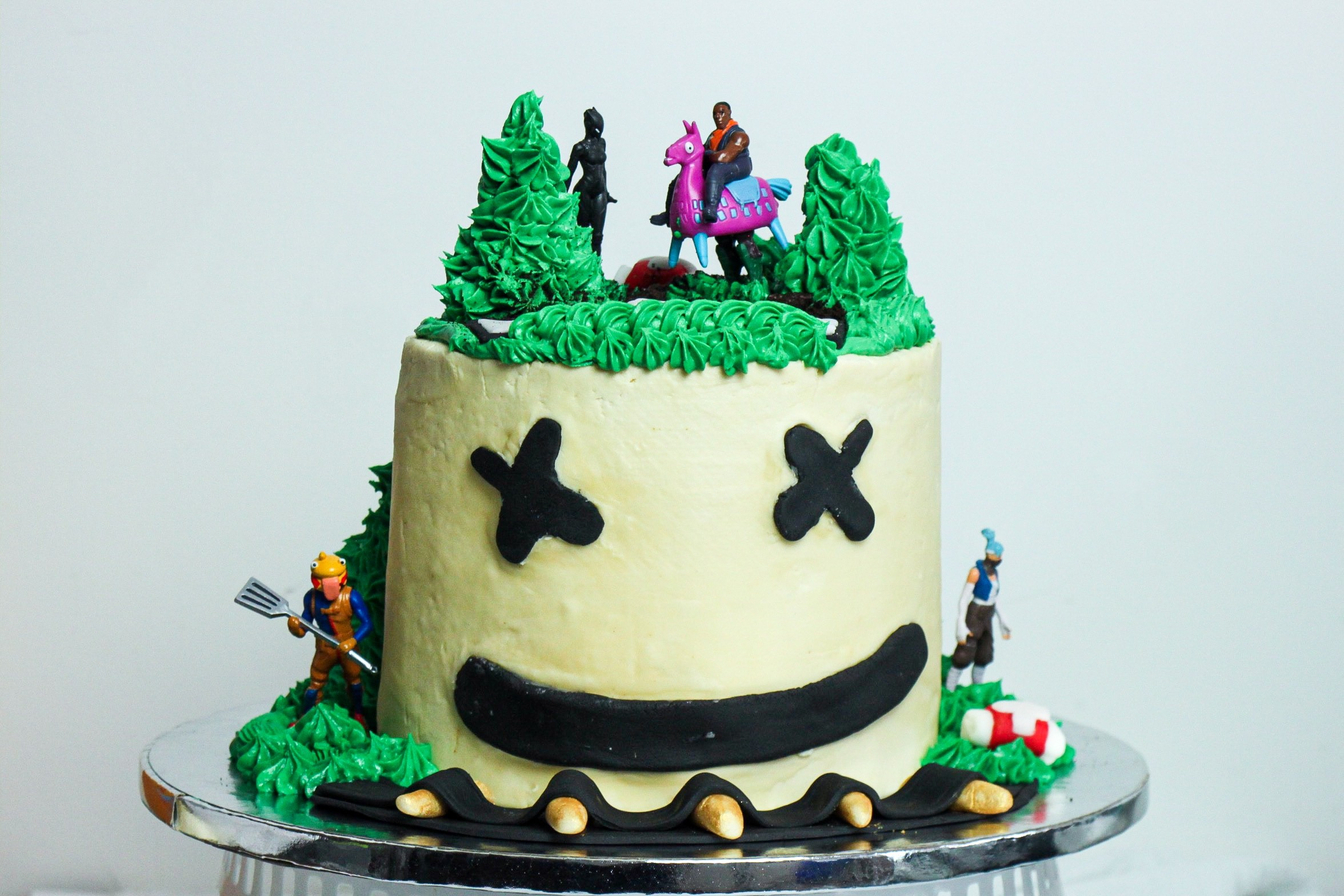 How I Made My First Themed Birthday Cake